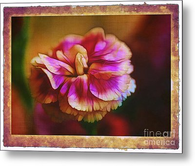 Yesterday Metal Print by Judi Bagwell