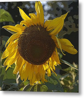 Metal Print featuring the photograph You Are My Sunshine by Cheri Randolph