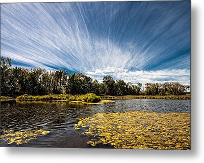 Metal Print featuring the photograph You Cannot Be Cirrus by Tom Gort