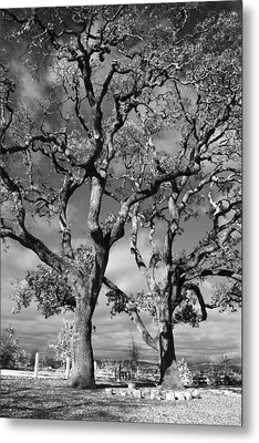 You Never Let Me Down Metal Print by Laurie Search