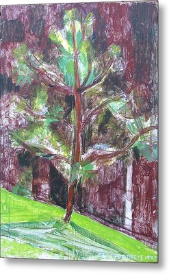 Metal Print featuring the painting Young Pine Tree by Anita Dale Livaditis