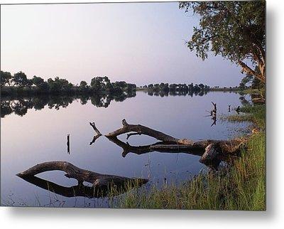 Zambesi River Metal Print by Axiom Photographic