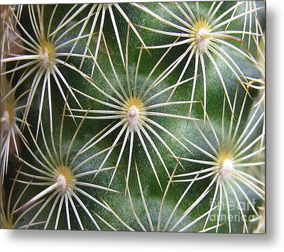 Metal Print featuring the photograph Zapped Photography by Tina Marie