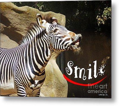 Zebra Smile Metal Print by Methune Hively