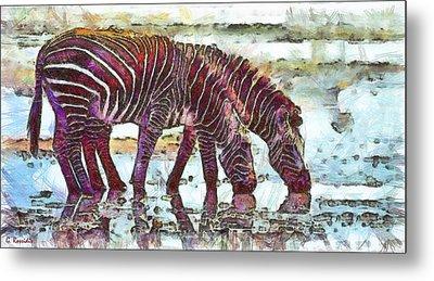 Zebras Metal Print by George Rossidis
