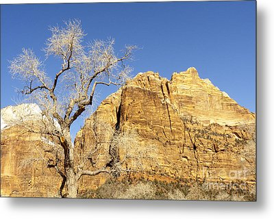 Metal Print featuring the photograph Zion Winter Sky by Bob and Nancy Kendrick