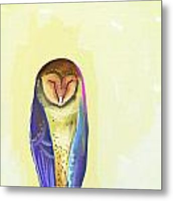 Quiet Owl Metal Print