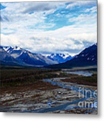 Alaska Mountain Range Metal Print by Thomas R Fletcher