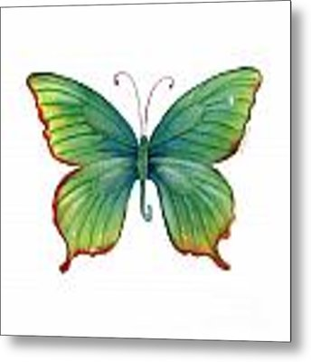74 Green Flame Tip Butterfly Metal Print
