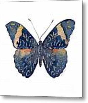 89 Red Cracker Butterfly Metal Print