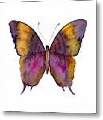99 Marcella Daggerwing Butterfly Metal Print