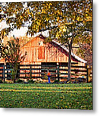 Barn Through The Trees Metal Print by Cricket Hackmann