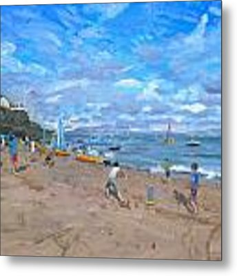Beach Cricket Metal Print by Andrew Macara