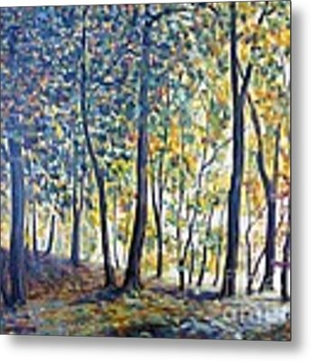 Beginning Of Autumn Metal Print by Cristina Stefan