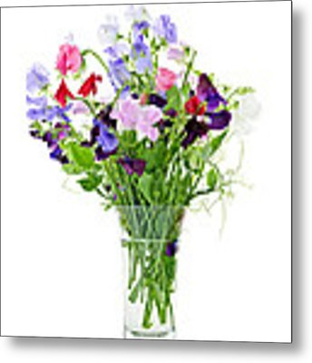 Bouquet Of Sweet Pea Flowers Metal Print