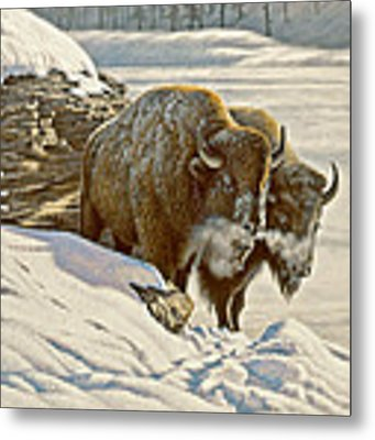 'cold Day At Soda Butte' Metal Print