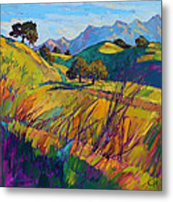 Color Curves Metal Print by Erin Hanson