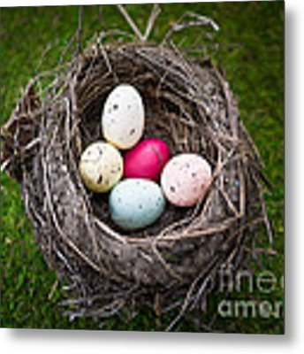 Colorful Eggs In Nest Metal Print by Edward Fielding
