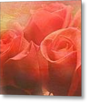 Dreams Of Roses Metal Print by Grace Dillon