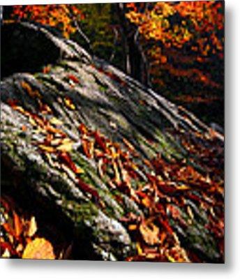 Fall In Gyeryongsan Metal Print by Brad Brizek
