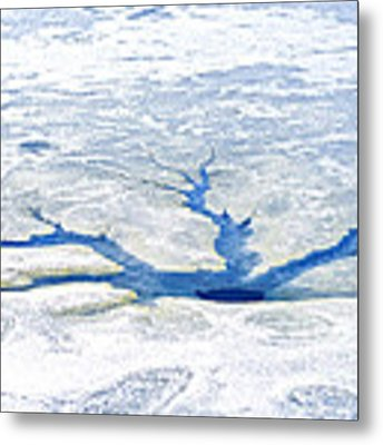 Ice Fracture Metal Print by Thomas R Fletcher