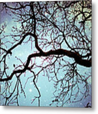 Into The Blue Metal Print by Lupen  Grainne
