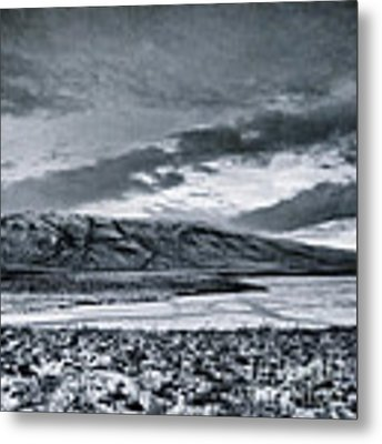 Land Shapes 12 Metal Print