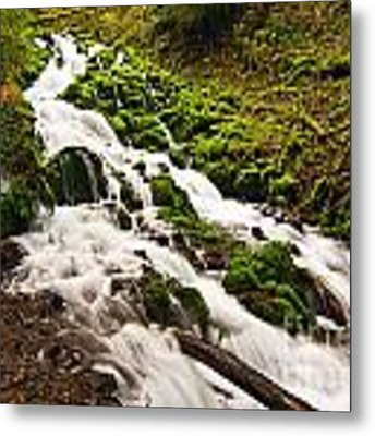 Mossy River Flowing. Metal Print