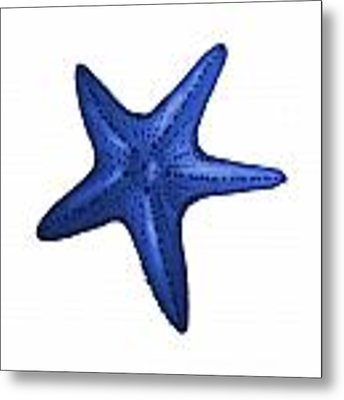 Nautical Blue Starfish Metal Print by Michelle Eshleman