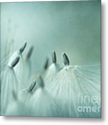New Generation Metal Print