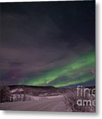 Night Skies Metal Print by Priska Wettstein