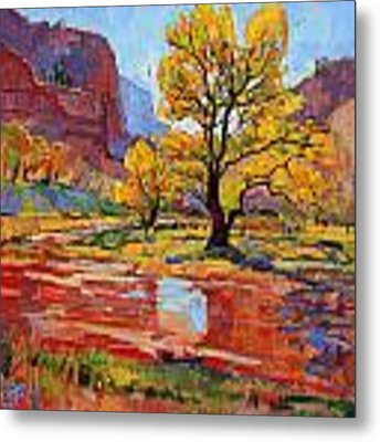 Reflections In The Wash Metal Print by Erin Hanson
