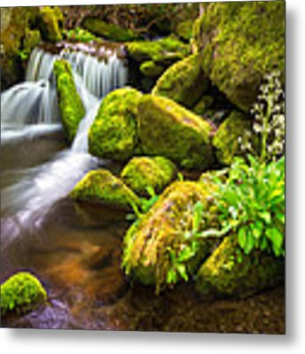Roaring Fork Great Smoky Mountains National Park Tn Metal Print