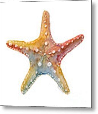 Starfish Metal Print by Amy Kirkpatrick