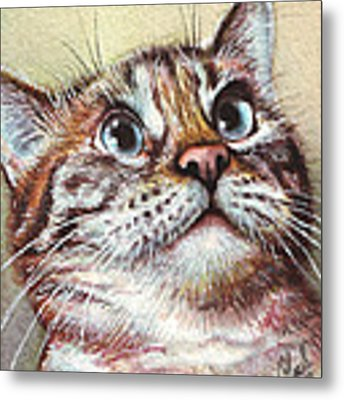 Surprised Kitty Metal Print