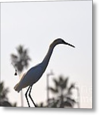 The Art Of Fishing Metal Print by Laurie Lundquist