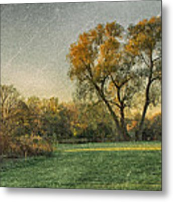 Touched By Light Metal Print by Garvin Hunter
