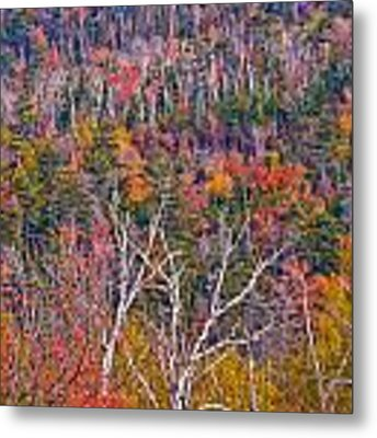 Wall Of Color Metal Print by Jeff Sinon