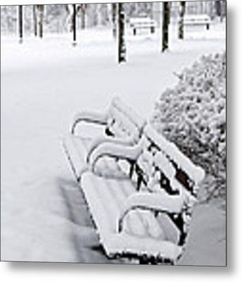 Winter Park With Benches Metal Print by Elena Elisseeva