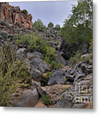 In The Arroyo   Metal Print by Ron Cline