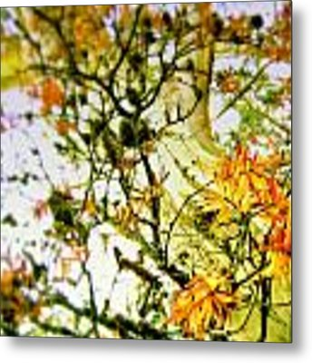 Magic Tree Metal Print by HweeYen Ong