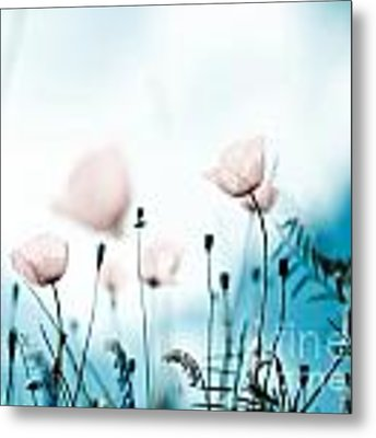 Poppy Flowers 11 Metal Print by Nailia Schwarz