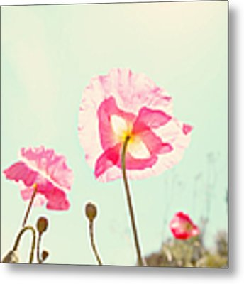 Sunshine And Poppy Metal Print by Kim Fearheiley