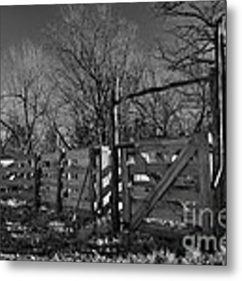 The Loading Pen Metal Print by Ron Cline
