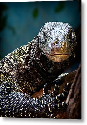 Metal Print featuring the photograph  A Crocodile Monitor Portrait by Lana Trussell