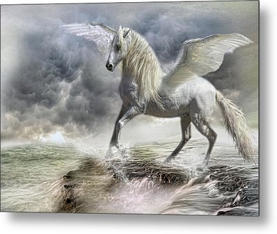 Bella Dante Metal Print by Trudi Simmonds