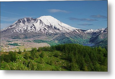 Castle Lake And Mt. St. Helens Metal Print
