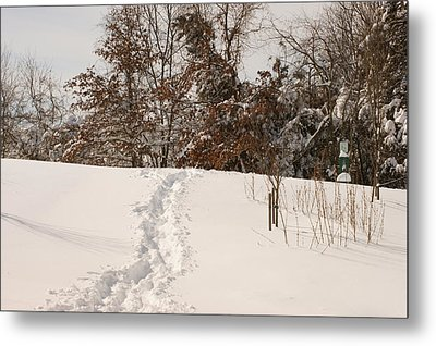 Christmas Snow Trail Metal Print by Heidi Poulin