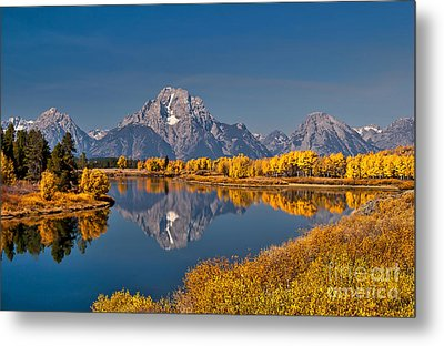 Fall Colors At Oxbow Bend In Grand Teton National Park Metal Print