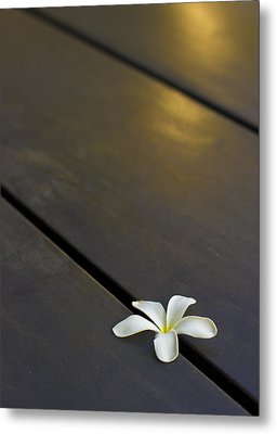 Metal Print featuring the photograph  Forever And Ever by Prakash Ghai